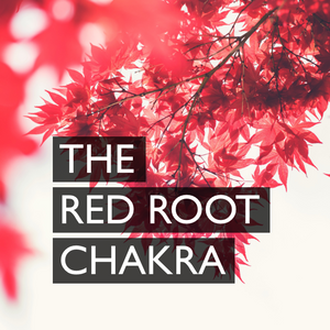The Red Root Chakra