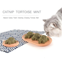 Load image into Gallery viewer, 3PCS Catnip Ball Tortoise