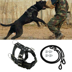 K9 Durable Dog Harness and Leash for Medium Large