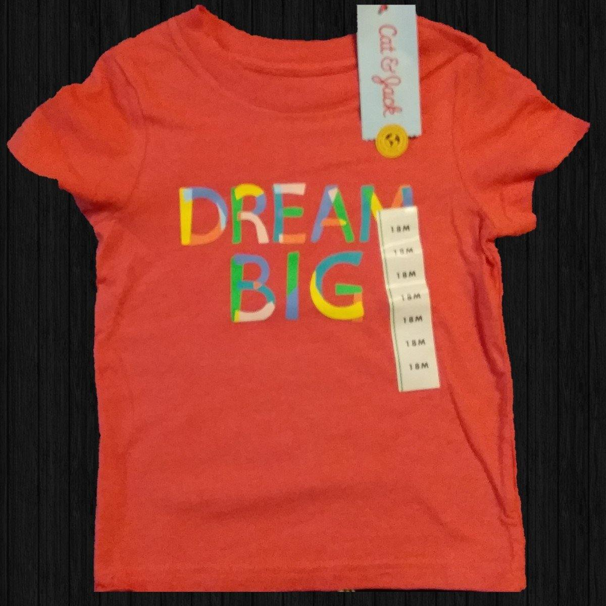 Dream Big Toddler Tee - LilChic BabyBug Boutique