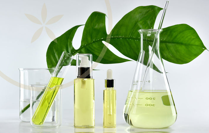 Alchemy vs Chemistry: Natural alternatives to toxic chemical products