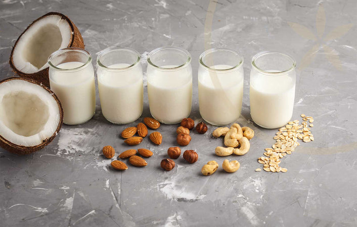 Non-dairy milk alternatives including coconut, almond, soy, cashew and oat