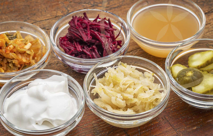 6 Probiotic Rich Foods For A Healthy Gut