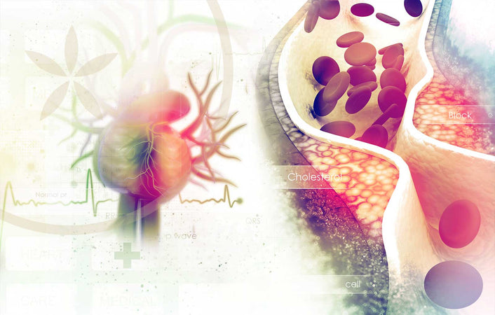 Cholesterol: The Good, Bad and Ugly.