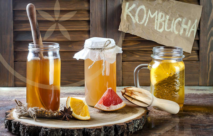 Homemade kombucha on table with fruit