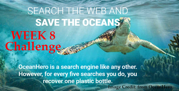 WEEK 8 Challenge - Change Your Search Engine to OceanHero