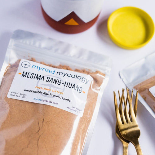 Mesima (Phellinus linteus) Bioavailable Mushroom Powder