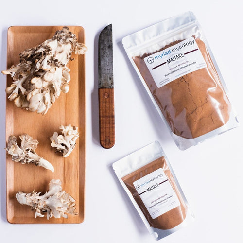 Maitake (Grifola frondosa) Bioavailable Mushroom Powder