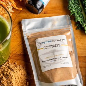 Cordyceps (Cordyceps militaris) Bioavailable Mushroom Powder