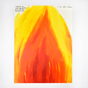 David Shrigley, Untitled (Thank you for burning all of my possessions), 2019 | Lougher Contemporary