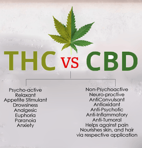 Differences between THC and CBD