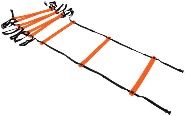 Precision Neo 4 Metre Speed Ladder -DS
