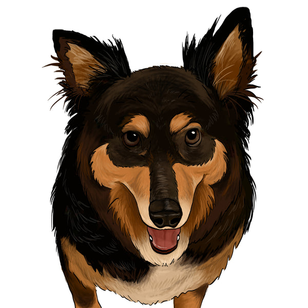 CUSTOM - Pet Portrait