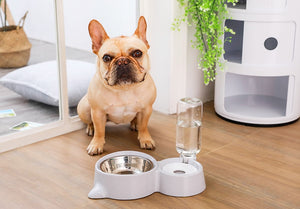 🐱 2-In-1 Useful Bowl Feeder + Water Fountain for Cats & Dogs 🐶 - The Geek Apparel