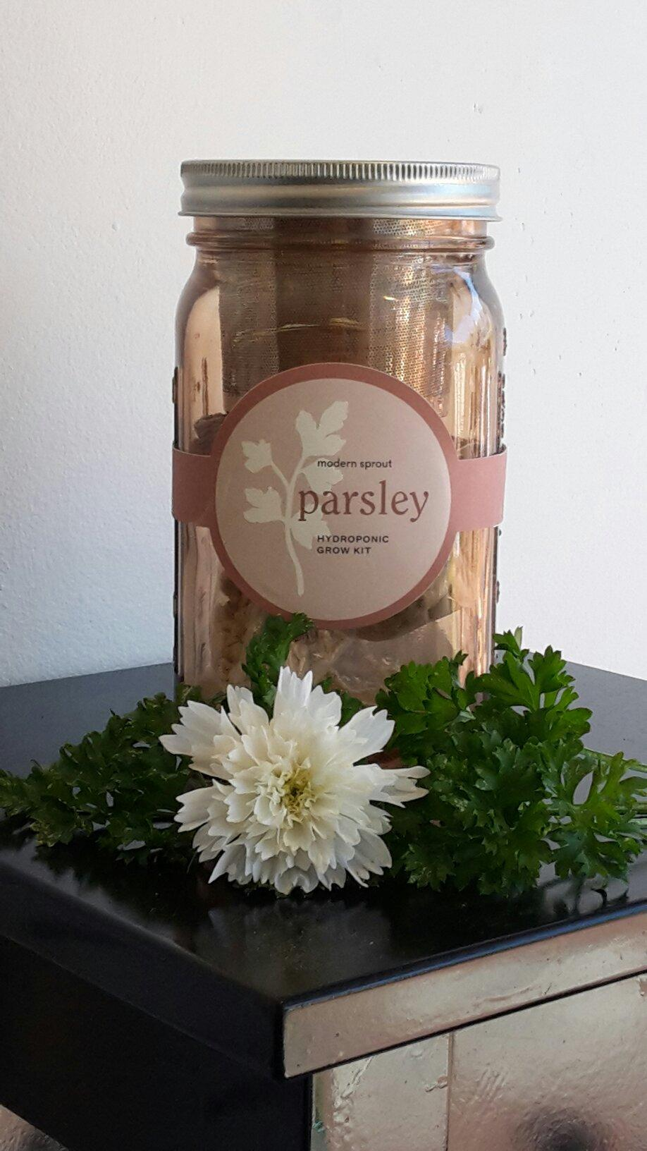 Parsley- Herb Garden Jar