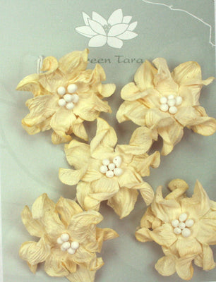 Green Tara - Apple Blossoms - Ivory