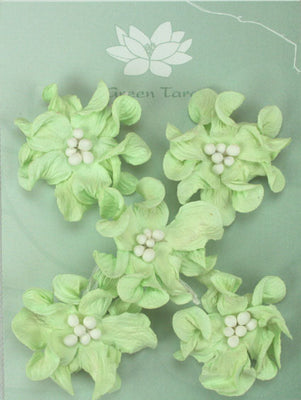 Green Tara - Apple Blossoms - Mint