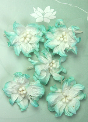Green Tara - Apple Blossoms - White/Turquoise