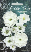 Green Tara - Fantasy Bloom Flower Pack - White