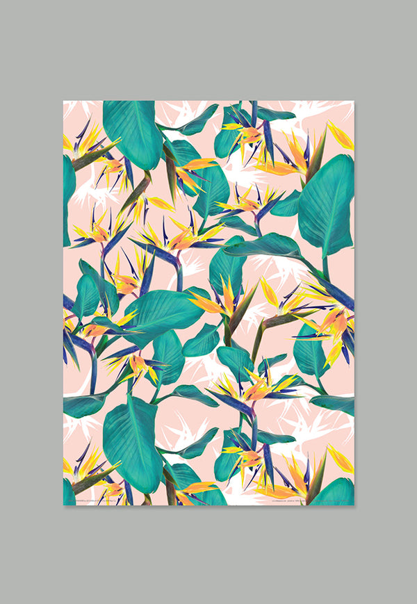 AHD Gift Wrap - Birds of Paradise
