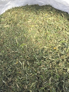 Bulk hemp biomass wholesale