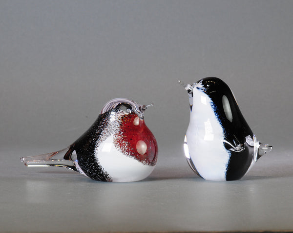 Glass Penguin