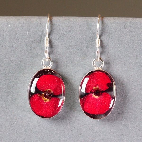 Silver and Real Poppy Flower Drop Earrings