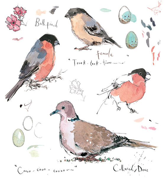 Madeleine Floyd 'Bullfinch and Collared Dove' Mounted Limited Edition Print.