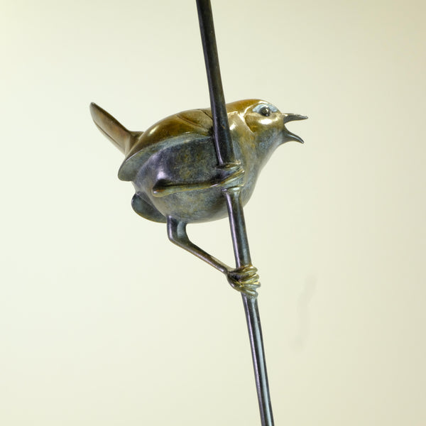 Bronze Wren on a Reed by David Meredith.
