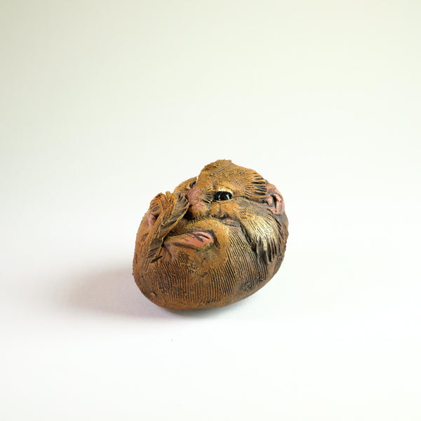 Ceramic Waking Dormouse by 'Bird Art'