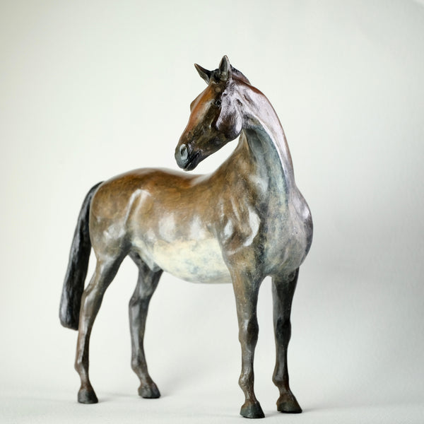 Special Limited Edition Bronze Horse by Jacqueline Warren.