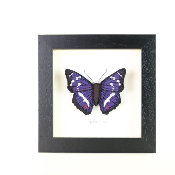 Framed Embroidered Butterfly.