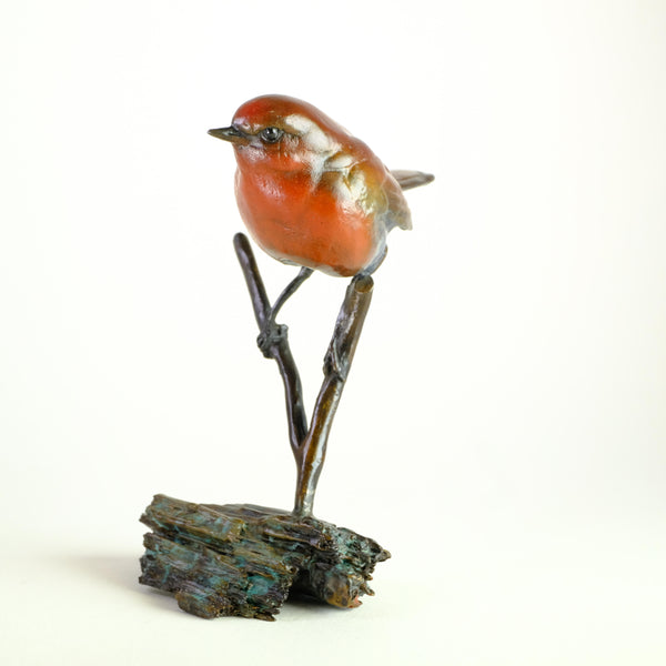 Limited Edition Bronze Robin by Steve Langford.