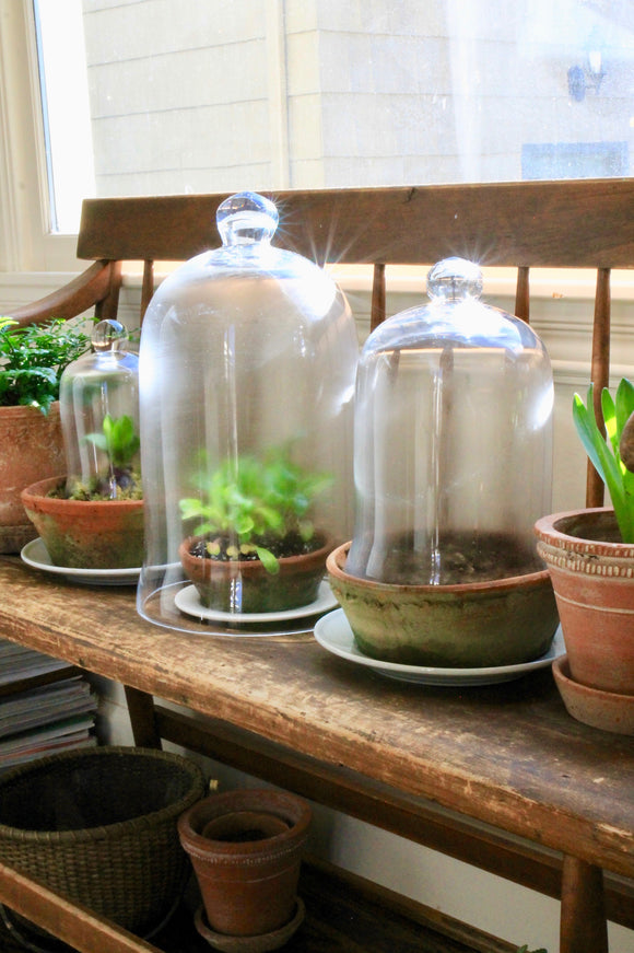 Bell Jar (Cloches)