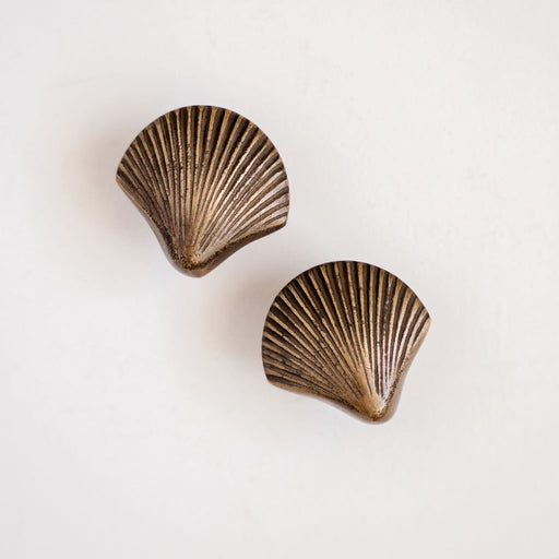 Shell Drawer Knobs