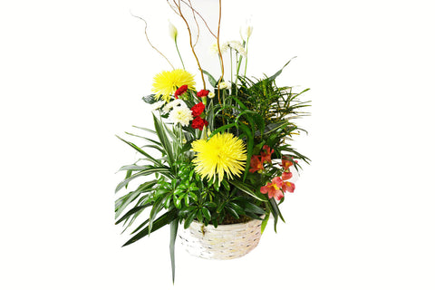 Fresh Sympathy Basket