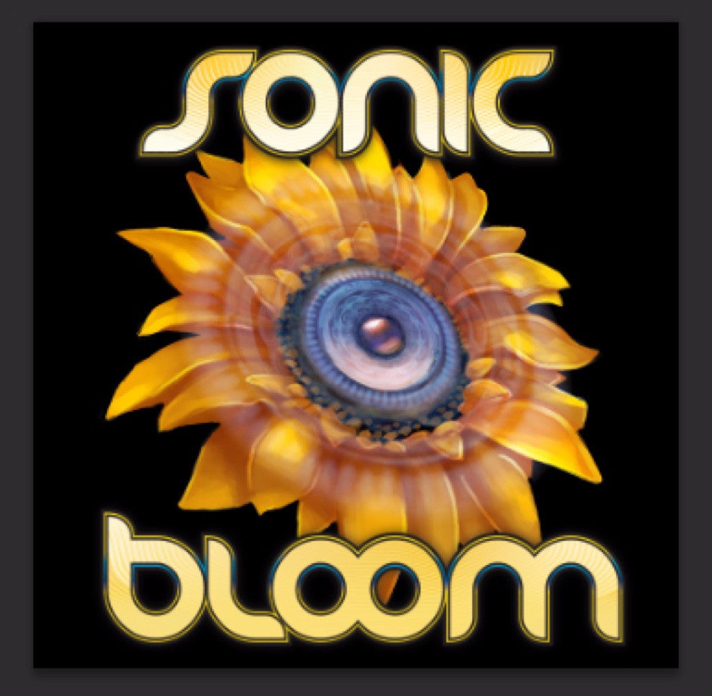 2015.06.19 :: Sonic Bloom :: Rye, Colorado