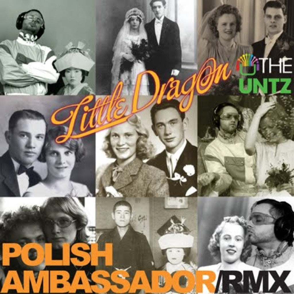 Little Dragon - Ritual Union (The Polish Ambassador Remix)