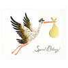 Rifle Paper Co. Special Delivery New Baby Card