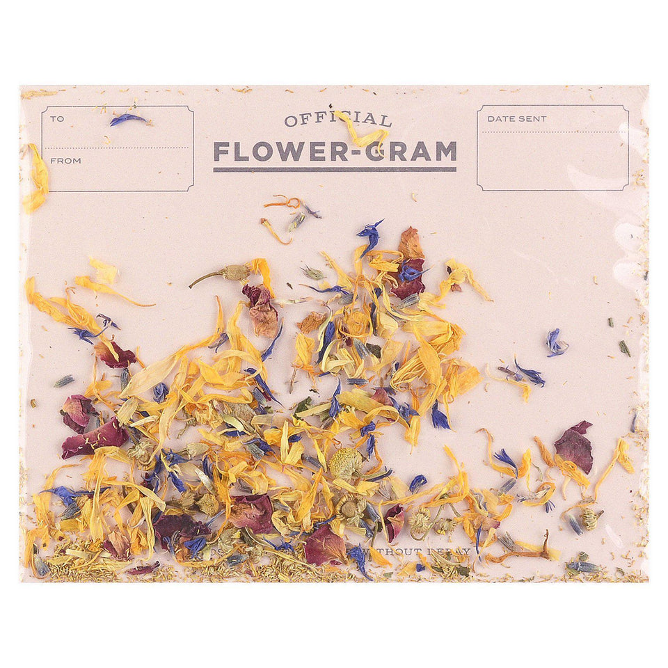 Inklings Paperie Flowergram Greeting Card Wildflowers & Mint