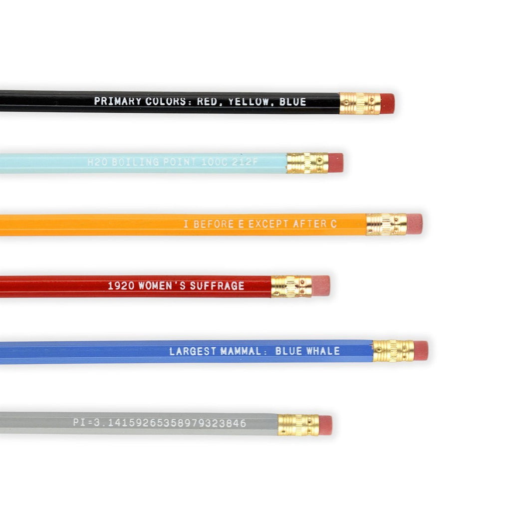 Know It All Pencil Set By Paper Pastries - 2
