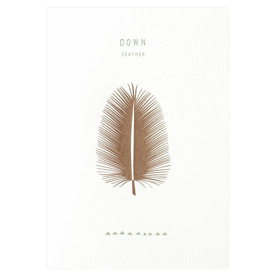 pleased to meet Down Feather Greeting Card