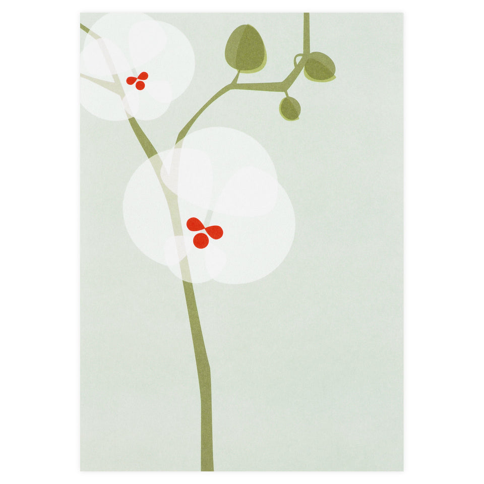 pleased to meet Orchid Greeting Card