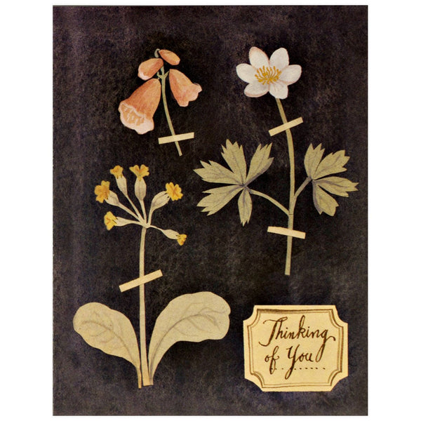 Pressed Flowers By Red Cap Cards