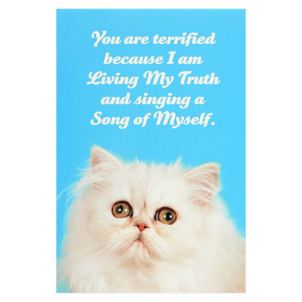 Social Justice Kittens Living My Truth Postcard By Sean Tejaratchi