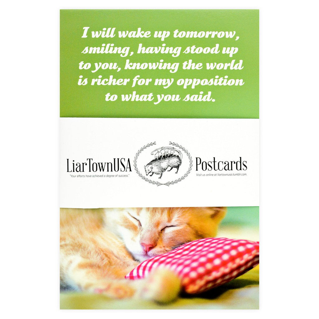 Social Justice Kittens Postcard Set - GREER Chicago Online Stationery