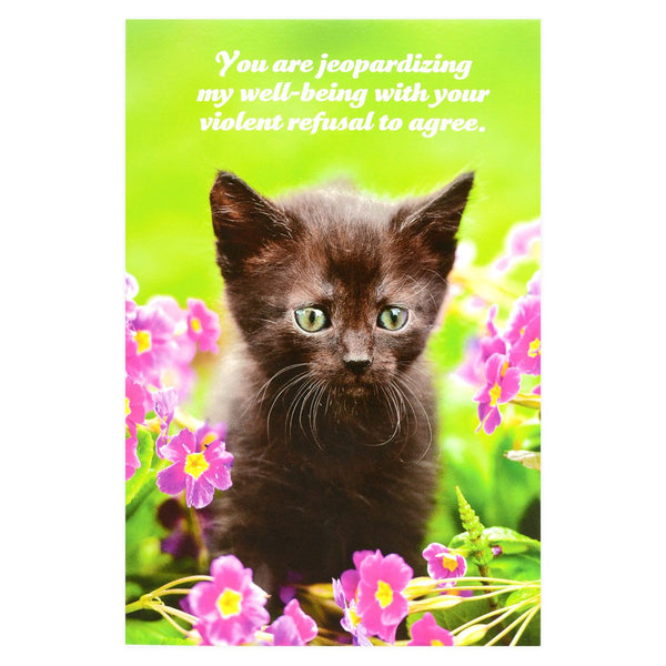 Social Justice Kittens Violent Refusal To Agree Postcard By Sean Tejaratchi