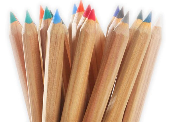 Standardgraph Thick Cedar Colored Pencil Set with Container By Dux - 1