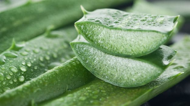 10 Proven benefits and uses of Aloe Vera Gel