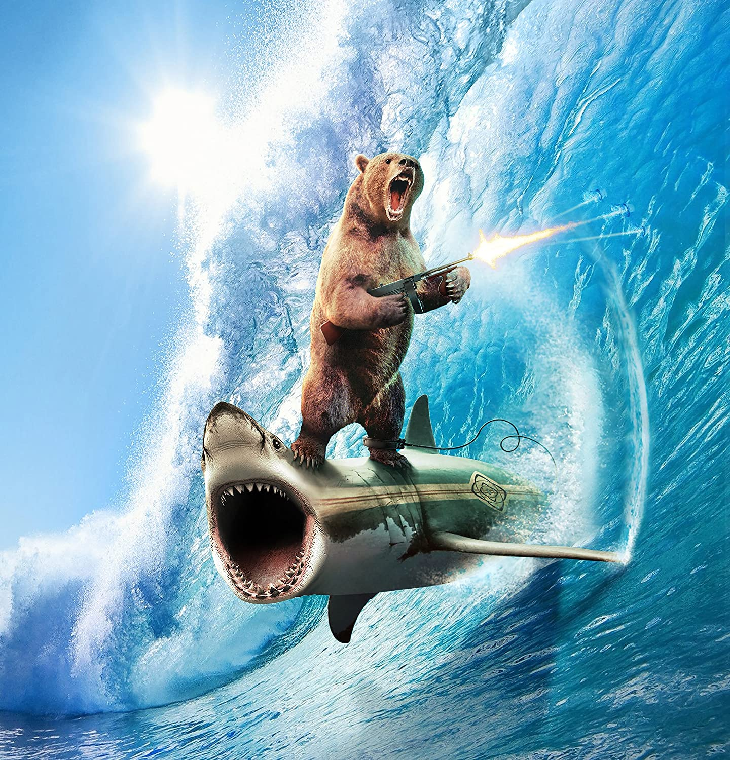 Bear surfing on a shark